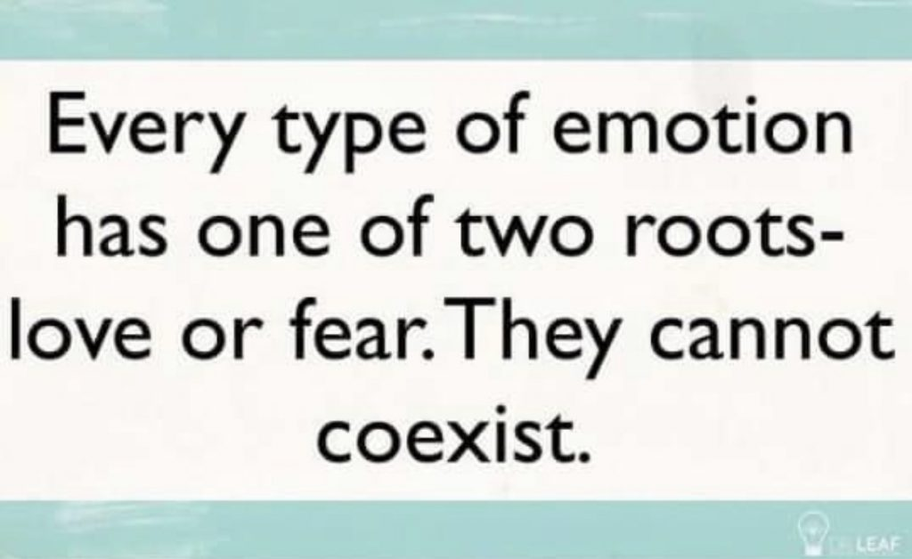 What do I do with emotions? What are they telling me?